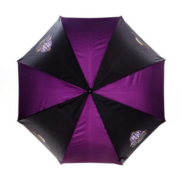 Branded Probrella umbrella viewed from top, with umbrellastore logo on blue and purple panels .
