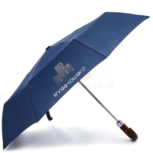 Branded Fare exclusive 50th corporate umbrella viewed from side, with two colour logo on two panels.